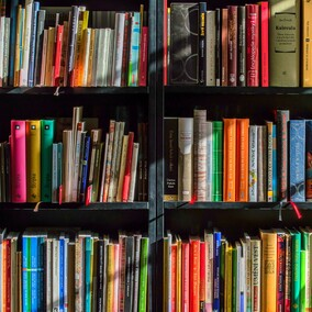 NZ RALLY RESOURCES