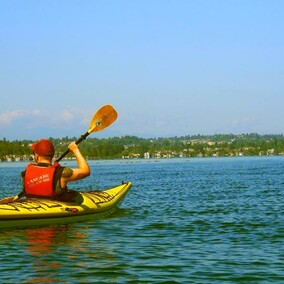 JOIN A NZ RALLY